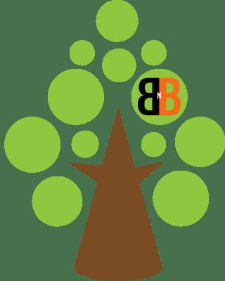 B N B Landscape Icon