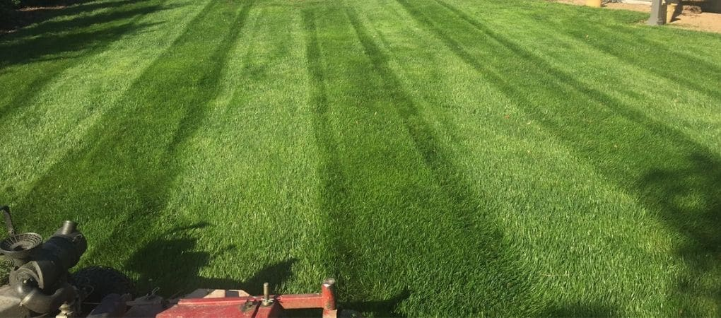 Lawn Mowing Service Florence KY