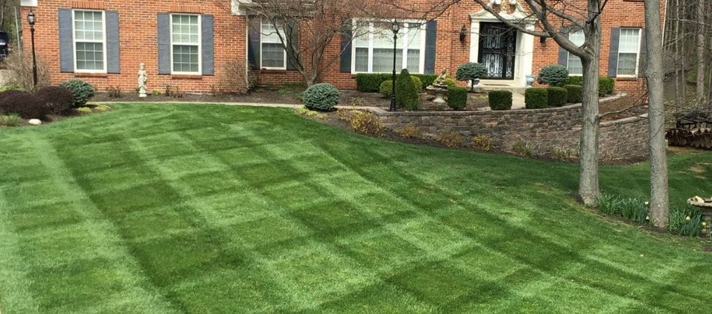 Lawn Mowing Service Union KY