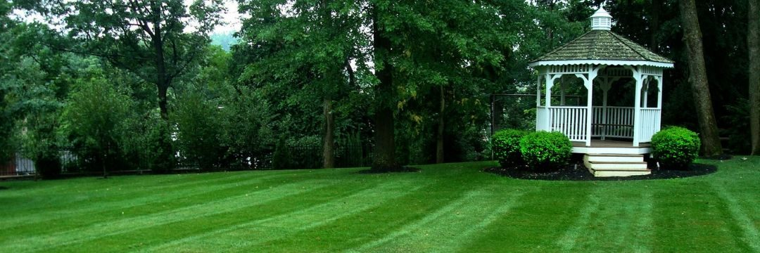Accepting New Lawn Mowing Clients In Northern Kentucky