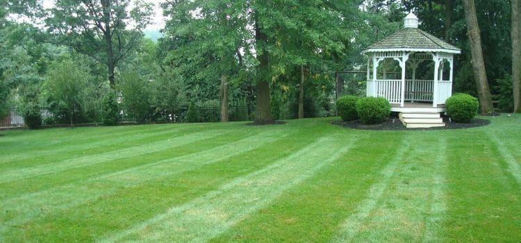 Lawn mowing stripes in a back yard with a gazebo.
